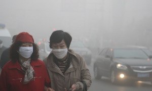 Does pollution make you smarter?