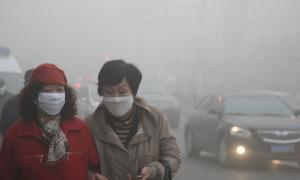 Does pollution make you smarter?